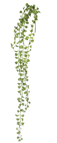 String of Pearls: 34cm