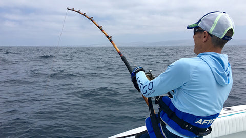 Giant Bluefin Tuna On Antique Tackle