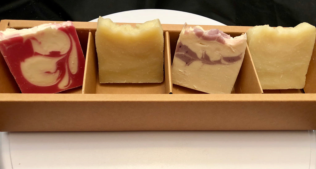 4 Pack Sample Soap Set