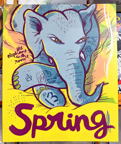 Spring: The Elephant in the Room