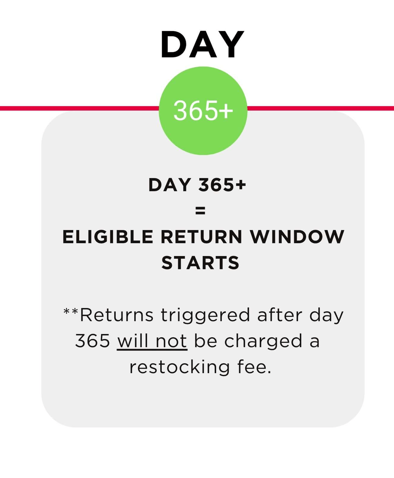 Day 365