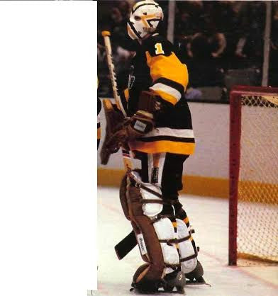 Goalie Mask - Denis Herron Pittsburgh Penguins