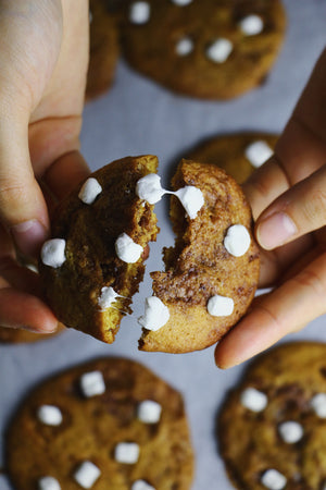 Gooey Joey | Nutella Cookies w/ Mini Marshmallows (~24 cookies)