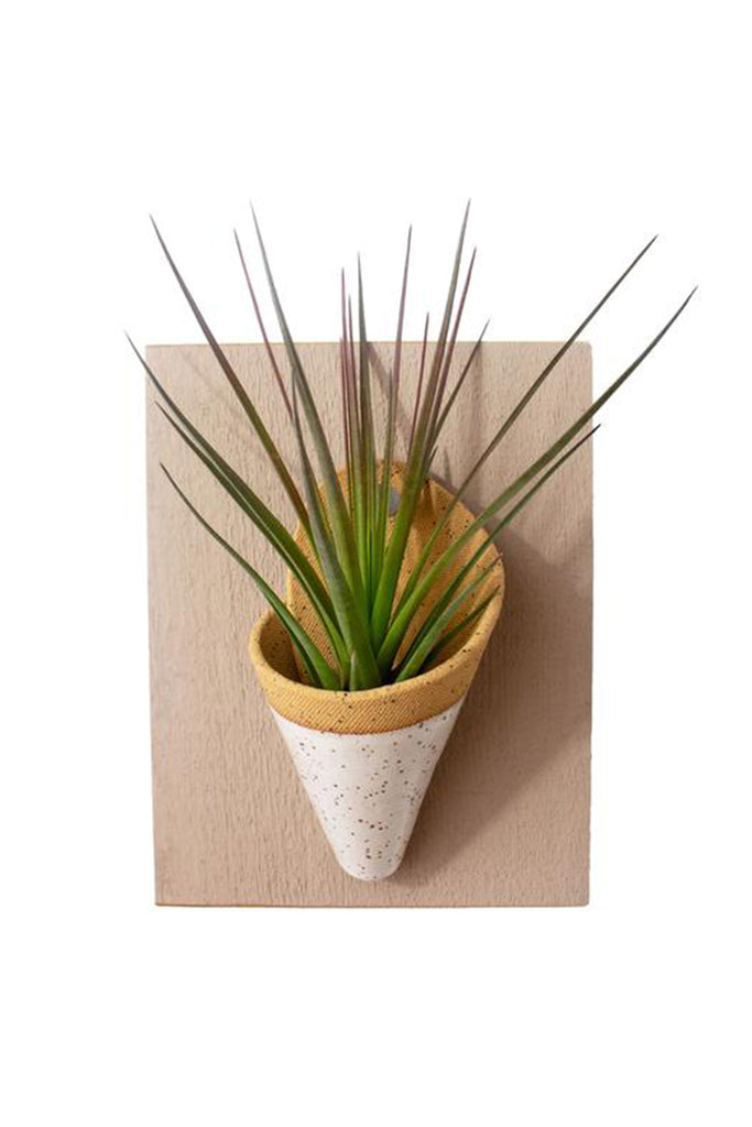 Ceramic & Wood Wall Planter by For Good