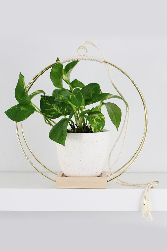 Plant Hanger (Large) by For Good