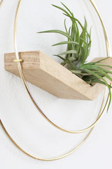 V Plant Hanger (Large) by For Good