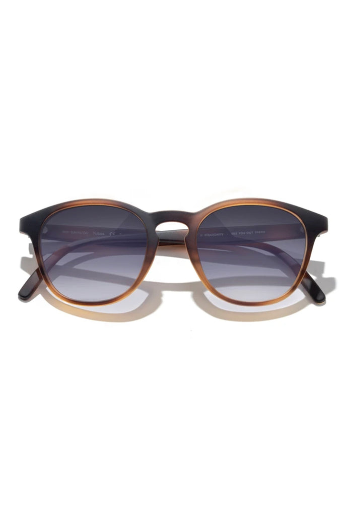 Yuba Tortoise Ocean Sunglasses by Sunski