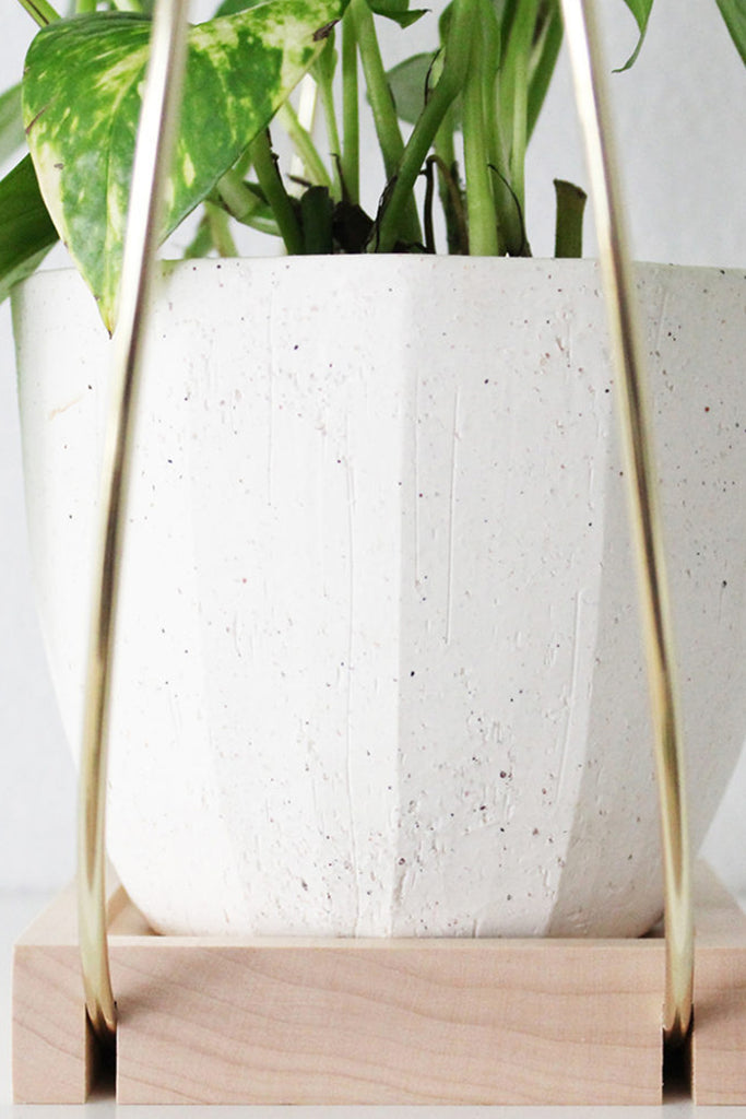 Plant Hanger (Medium) by For Good