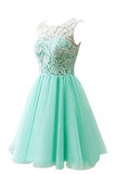 Flower Girl / Adult Ball Gown Lace Short Prom Dress PH217