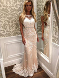 Charming Lace Mermaid Long Sexy Sleeveless Beading See Through Prom Dress uk PM149