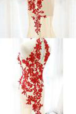 Fashion Champagne Prom Dress,Tulle Formal Gown,Red Prom Dresses,Lace Evening Gowns PM850