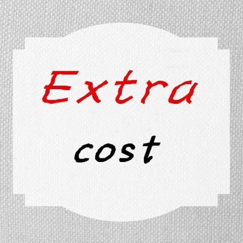 Copy of Extra Cost of Rush order, Get dress within 15 days