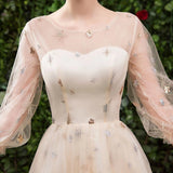 Princess A Line Long Sleeve Tulle Round Neck Evening Dress with Appliques, Prom Gowns P1247