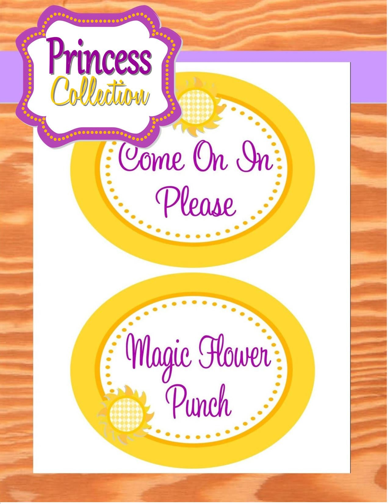 graphic relating to Party Signs Printable titled PRINCESS Bash - Indicators- Occasion Printable- Sun Occasion