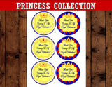 PRINCESS BIRTHDAY- Princess Party - Princess Thank You Tags