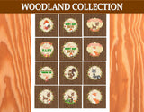 WOODLAND Party - Fox Party - Woodland CUPCAKE TOPPERS- Forest Friends Party