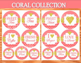 CORAL BRIDAL SHOWER- Coral and Gold- Birthday- BURSTS- Coral Decorations