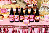HORSE - STRAW FLAGS- Cowgirl Party - Pink Cowgirl