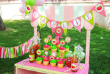 STRAWBERRY Party- Strawberry BURSTS- Strawberry Birthday