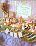 PRINCESS Party- Sparkle SIGN-She Leaves SPARKLES- Thank You- Pink