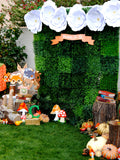 WOODLAND Party - Woodland Baby Shower - Woodland BURSTS