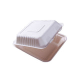 20cm² Bagasse Take Away Food Box