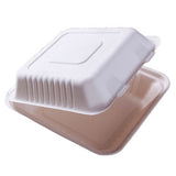 23cm² Bagasse Take Away Food Box