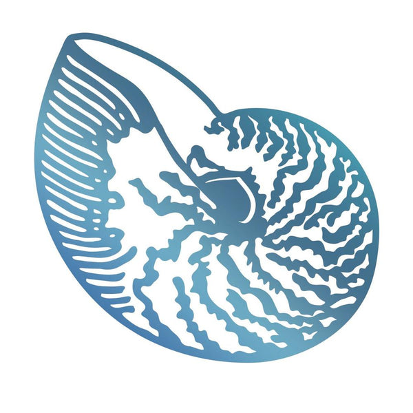 Couture Creations - Seaside & Me - Hotfoil Stamp Atlantic Shell (CO726177)