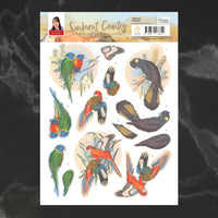 Couture Creations - Sunburnt Country - A4 Decoupage - Lorikeet (CO727191)