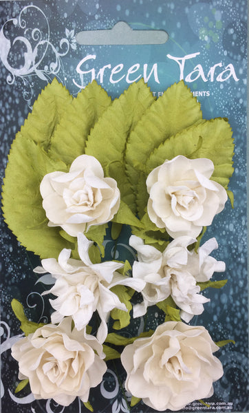 Green Tara - Tea Rose -  White 6pcs  (TRWh)