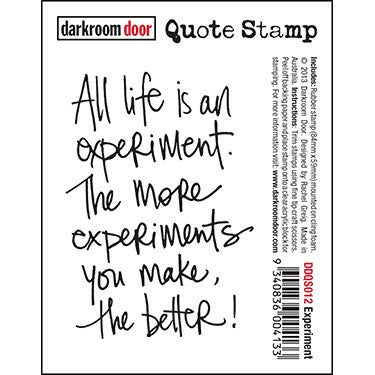 Darkroom Door - Quote Stamp - Experiment  (DDQS012)