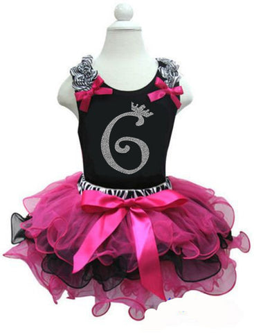 CLEARANCE: Zebra Hot Pink Black Birthday Party Dress with Number 6 on it