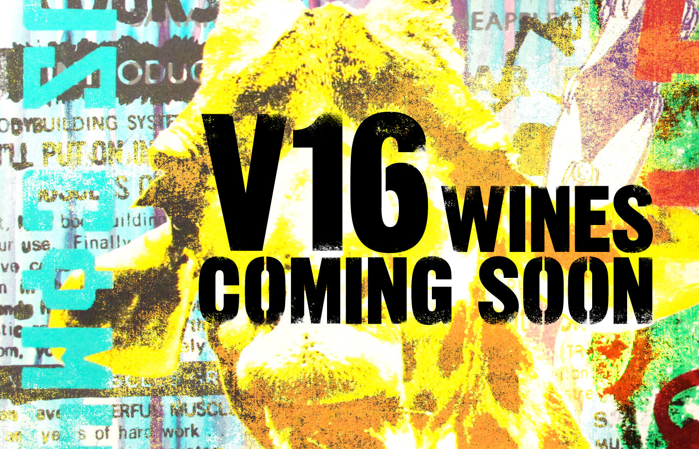 V16 Wines Coming Soon