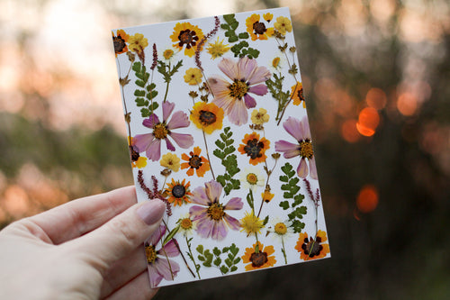 Cosmos Mix - Pressed flower collection card