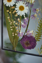 Load image into Gallery viewer, Pressed flower glass frame Wall hanging - After the rain