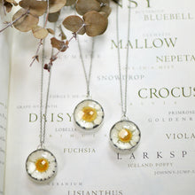 Load image into Gallery viewer, Real daisy flower necklace