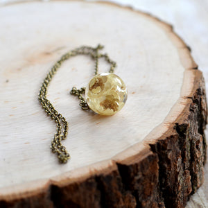 Preserved Star Flower small sphere necklace