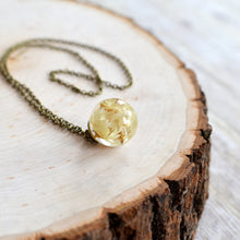 Load image into Gallery viewer, Preserved Star Flower small sphere necklace