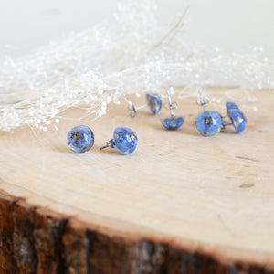 Forget me not earrings studs