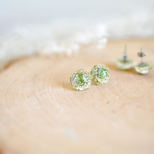 Load image into Gallery viewer, (Wholesale) Queen Anne's Lace Floral stud earrings