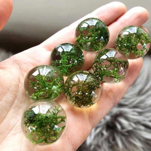 Beautiful Norwegian reindeer moss is encased in the resin sphere perfectly preserving its natural structure and gorgeous rich green color.