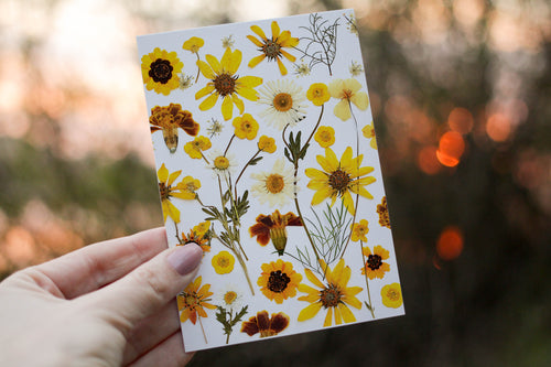 Yellow Flower Mix - Pressed flower collection card