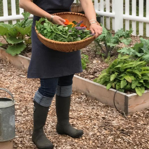 2019 Classroom BEYOND the Home Herbalist Series