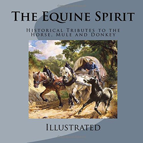 The Equine Spirit