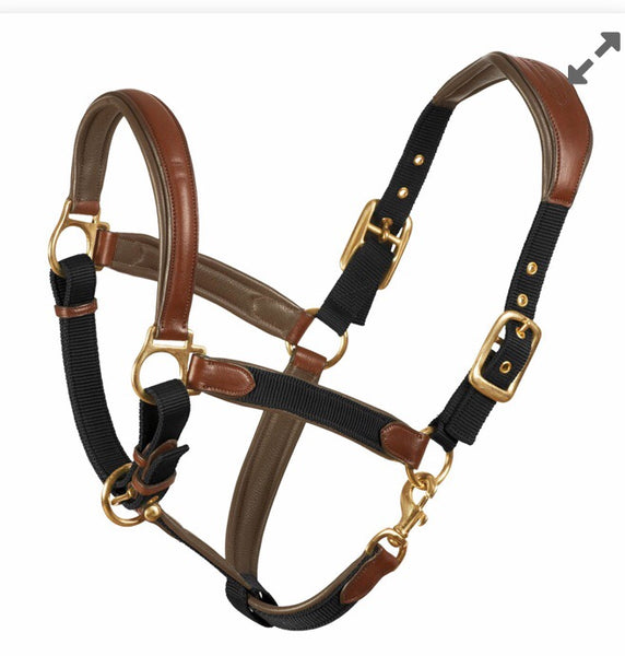 Ovation Luxor Comfort Anatomic Crown Halter
