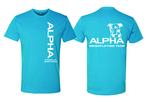 Alpha - Premium Fitted Crew Neck T-shirt