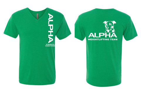Alpha - Triblend V-Neck T-shirt