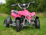 Electric Kids Quad Bikes (Age 4-9 years) 36v 1000w - Kids Quads - 4