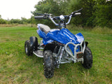 Electric Kids Quad Bikes (Age 4-9 years) 36v 1000w - Kids Quads - 3