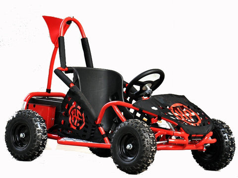 Electric GoKart (Age 6 to 12 years) 48v 1000w - Kids Quads